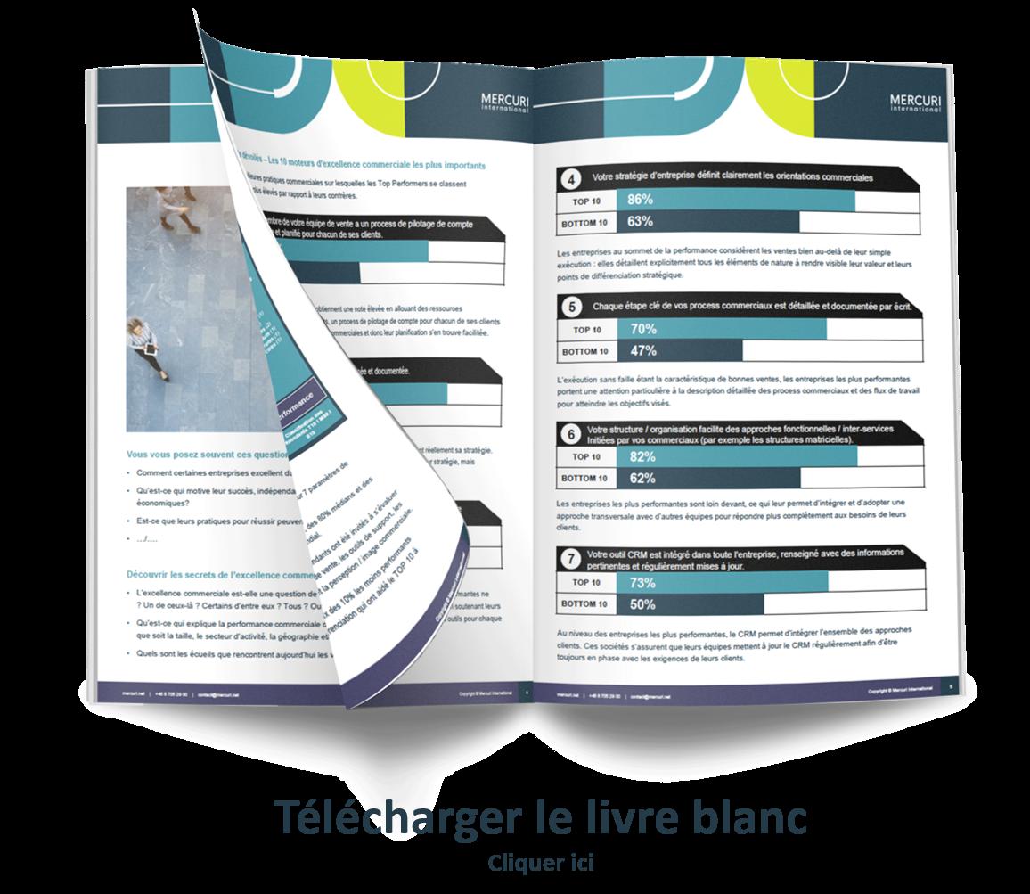 Etude Sales Excellence Survey